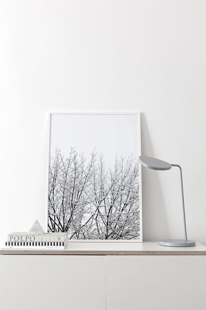 coco-lapine-snow